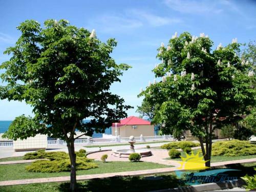 Автобусный тур в Кабардинку - База отдыха ОК «Лазурный»